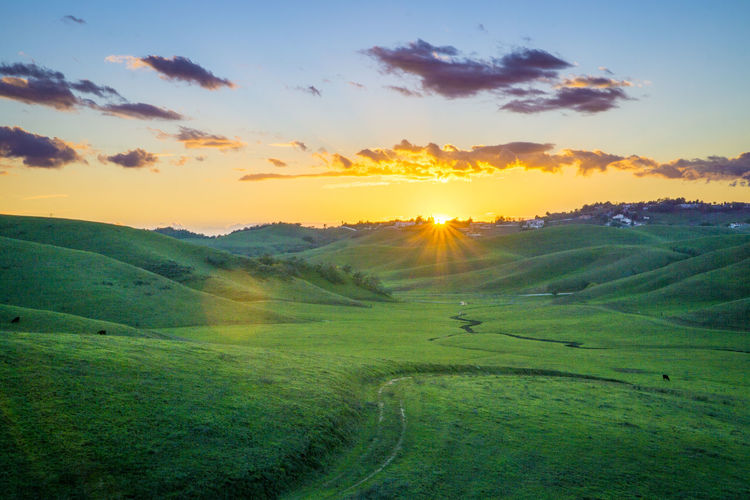 Sunset in Southern California Agriculture Beauty In Nature Cloud - Sky Day Field Grass Green Color Growth Landscape Lush - Description Lush Foliage Mountain Nature No People Outdoors Rural Scene Scenics Sky Social Issues Sun Sunset Tree