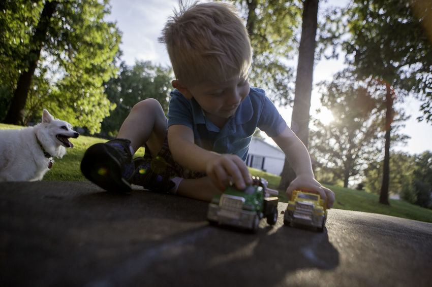 A young boy plays with toy cars and trucks on his front porch at his home while his dog looks on. American Eskimo Blond Hair Child Day Dog Leisure Activity Outdoors Play Playing Puppy Toy Car Toy Truck Weekend Activities