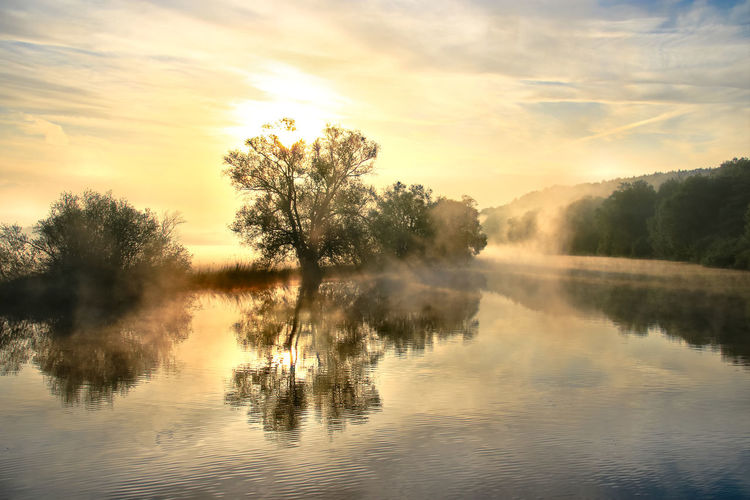 Morning dream Morning Dream Water Reflection Sky Beauty In Nature Tranquility Tree Tranquil Scene Scenics - Nature Sunset Waterfront Cloud - Sky Plant No People Nature Idyllic Non-urban Scene Fog Sun Outdoors River
