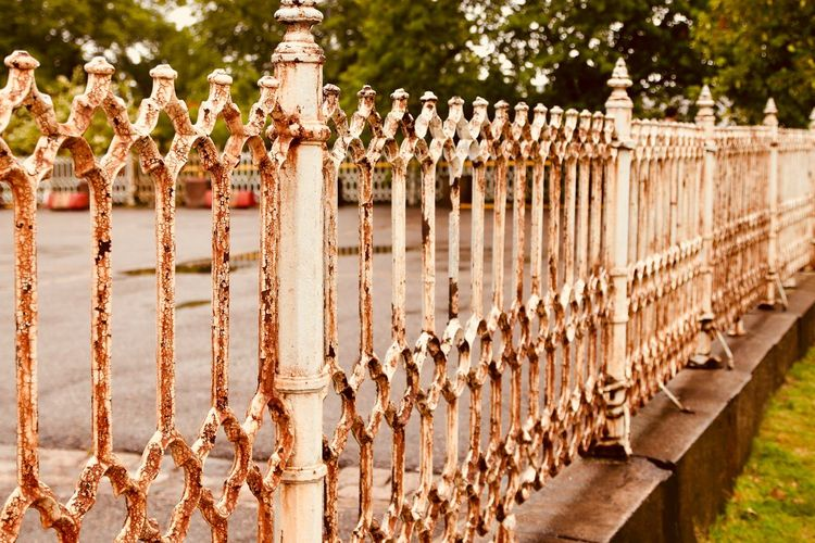 Rusty Cast Iron Fence Fence Barrier Boundary Day Plant No People Nature Security In A Row Sunlight Protection Outdoors Pattern Railing Safety Architecture Wall - Building Feature