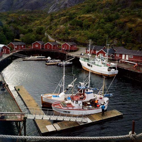 Lofoten Norway Fishing Village Fjords Lofoten Islands Fishing Port Nusfjord Fishing Boat Red Building Norway EyeEm Best Shots