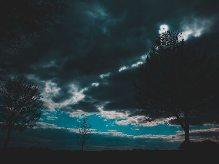 EyeEm Nature Lover EyeEm Selects EyeEm Best Shots EyeEm Gallery Sky Cloud - Sky Tree Plant Beauty In Nature Nature Low Angle View Silhouette No People Scenics - Nature Storm Tranquil Scene Tranquility Growth Storm Cloud Dusk Overcast Outdoors Dramatic Sky