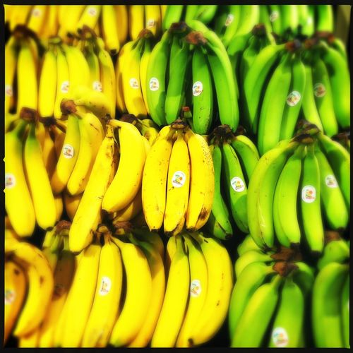 Abundance Banana Choice Close-up Food Food And Drink Freshness Fruit Healthy Eating Large Group Of Objects Market Stall Organic Ripe Still Life Variation Yellow