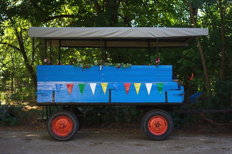 View of blue cart against trees