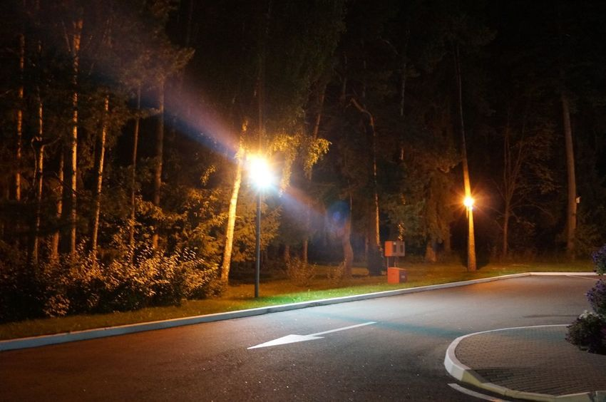 Night Illuminated Road Street City No People Transportation Direction Outdoors Tree Architecture Long Exposure The Way Forward Nature Light Trail Lighting Equipment Motion Street Light Plant Glowing