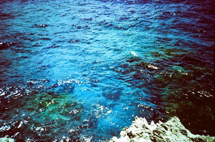 Blue Wave Island Film 135mm LC-A+ Lomography Sea Sea Scape Traveling Travel Photography Crossprocess Cross Process Ishigaki Island