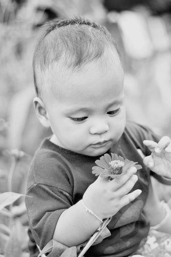 Cute Boy Holding Flower Outdoors