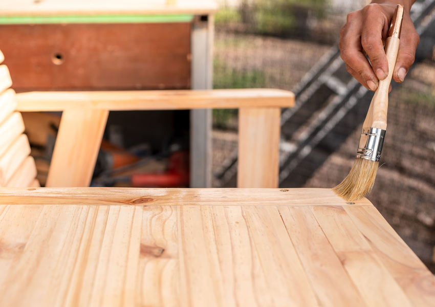 Young man's hand holding a brush applying varnish paint on a wooden furniture Adult Carpenter Close-up Day DIY Focus On Foreground Hammer Hand Hand Tool Holding Human Body Part Human Hand Occupation One Person Plank Tool Wood - Material Work Tool Working