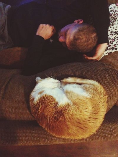 She has a favourite and so does he ❤️😻 just melts my heart to see the love around me 😘 keep your fine friends close 😉👏 Pets One Animal Oneperson Sleepy Time Pictures Are Reflections To The Soul Making Memories! :) Pet Portraits