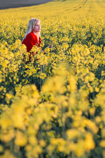 Thoughtful young woman amidst yellow flowering plants on field