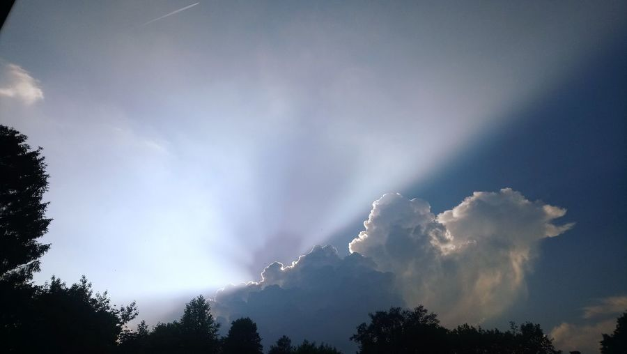 I just read online we had a beginning of a tornado above Leek, Groningen. A little earlier i saw this gigantic cloud/thunderstorm.. Tree Forest Sky Cloud - Sky Storm Cloud Thunderstorm Storm Tornado Extreme Weather Hurricane - Storm Power In Nature Weather