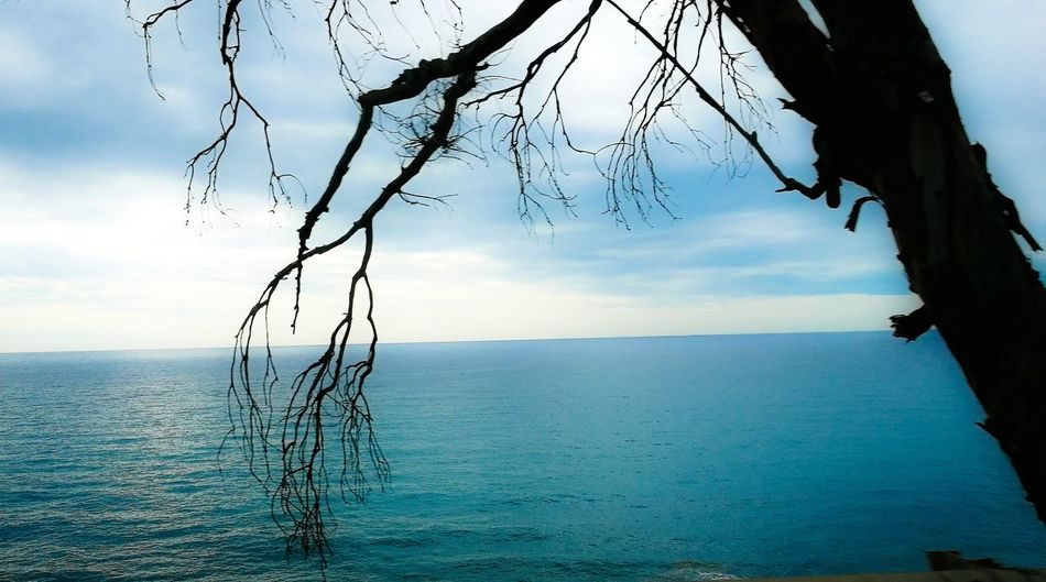 Sea Nature Tranquil Scene Landscape San Remo Italy 🇮🇹 P9 Huawei