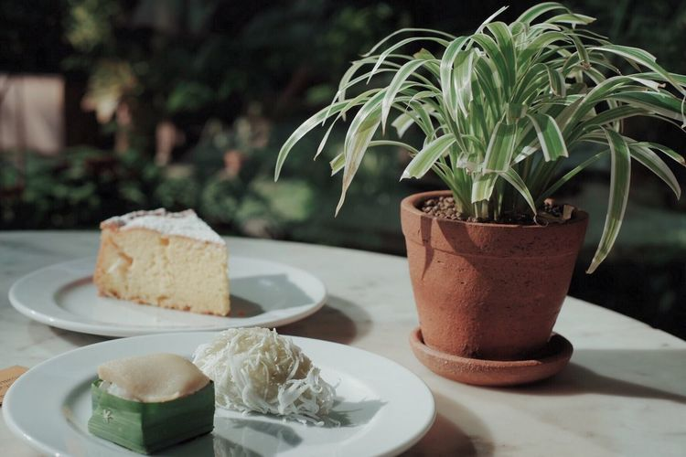 Close-up of food served in plate by potted plant on table