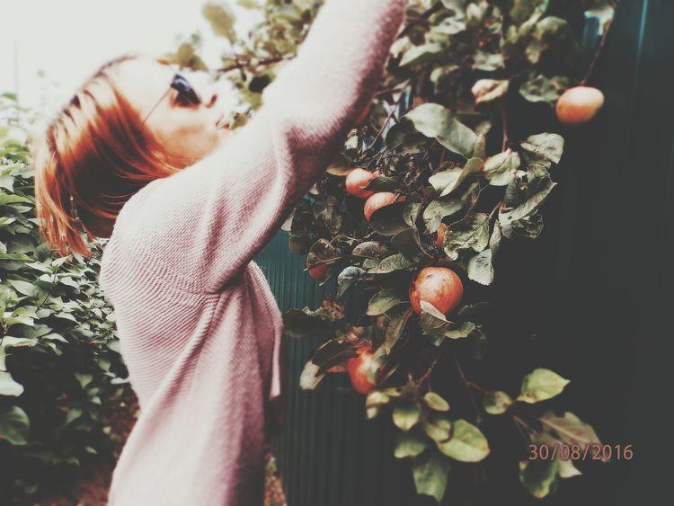 Кириши яблоко витаминыыы чужой огород 2016♡ псковскаяобласть Пора_домой деревня скоро на работу Detective Спб Hello World россияматушка РоссияСтрашнаяСила