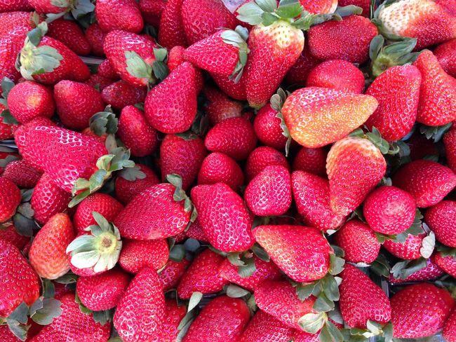 Morangos Strawberries Feira Market Rio De Janeiro EyeEm Rio Brazil Agriculture Red