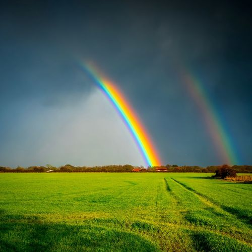 Rainbow Beauty In Nature Scenics - Nature Field Land Multi Colored Sky Tranquil Scene Idyllic Environment Tranquility Nature Landscape Plant Double Rainbow Green Color No People Rural Scene Cloud - Sky Outdoors