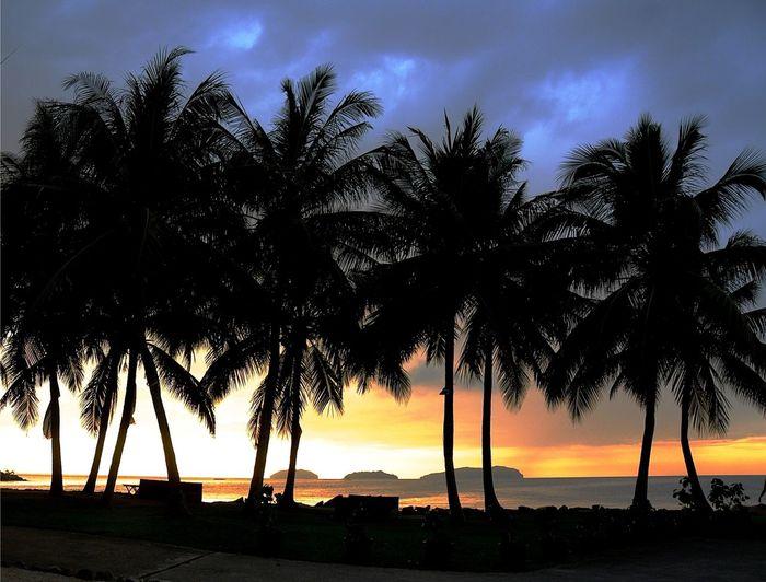 Silhouette Sunset Beautiful BorneoLandBelowTheWind