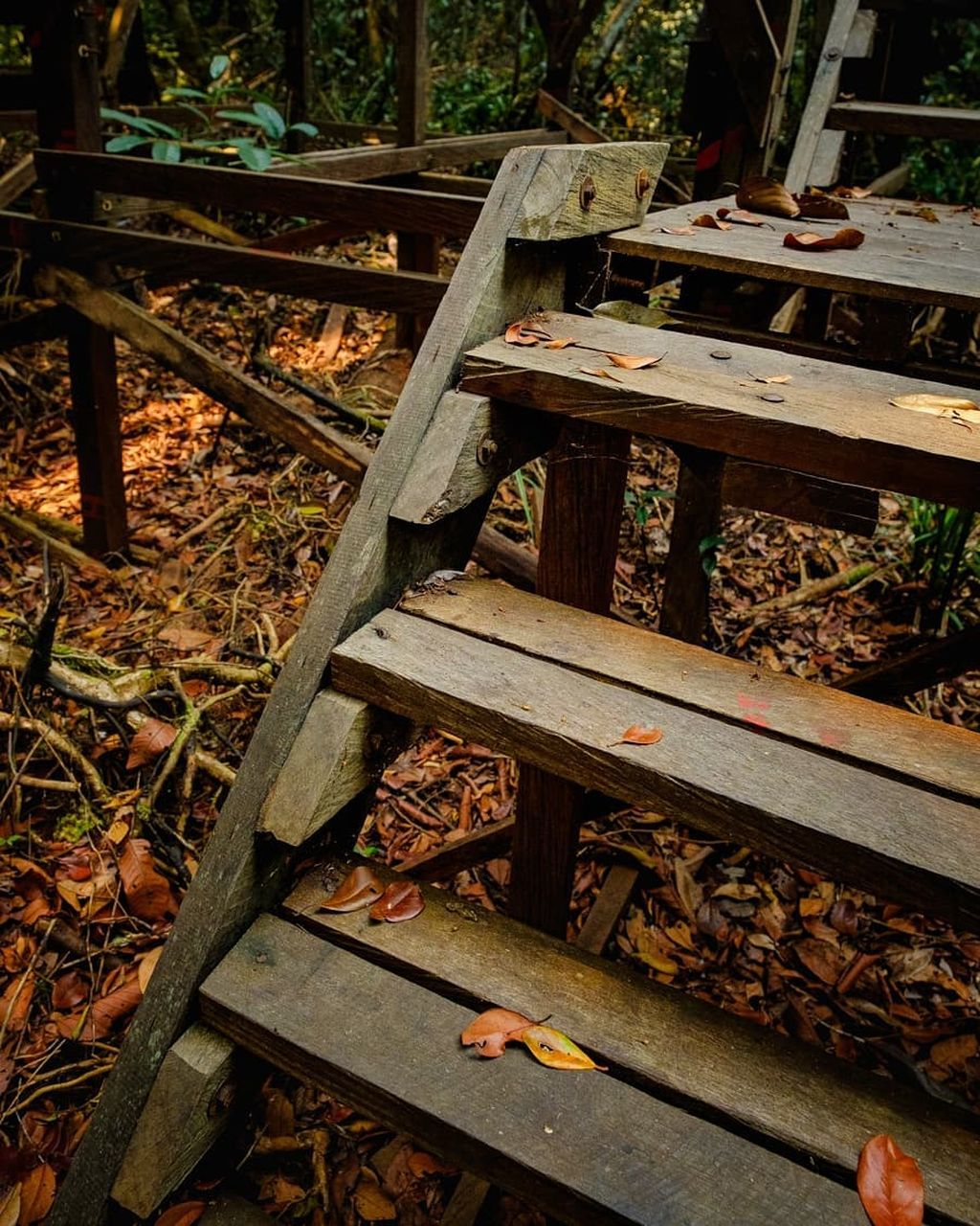 wood - material, metal, rusty, no people, day, nature, high angle view, old, abandoned, outdoors, close-up, wood, land, railroad track, leaf, tree, track, damaged, obsolete