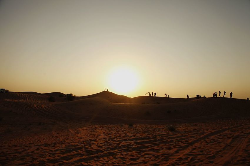 Desert Sunset Sand Nature Landscape Sun Outdoors Dubai❤ Eyeemphotography Enjoying Life EyeEm Gallery Dubai Beach Sky Arid Climate Sand Dune Scenics Tranquility Tranquil Scene No People Mammal Day Hello World