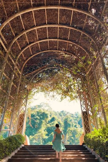 Chiangmai PhonePhotography Botanical Garden QueenSirikitBotanicGarden Upstairs Walking Architecture Real People Rear View Built Structure Women Leisure Activity Day Outdoors Tree