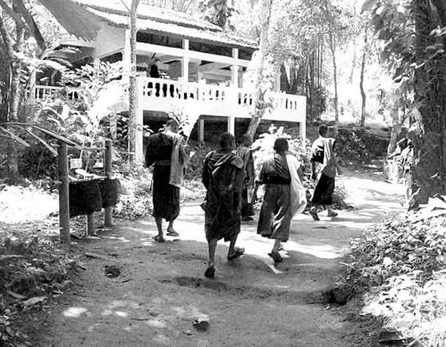 Kuangsifalls Luangprabang Laos ASIA Southeastasia Travelling Backpacker Temple Blackandwhite Monochrome Bw_awards Bw Igersitalia Nationalgeographic Natgeoit Natgeo Bw_crew Bw_lover Monk  Serenity