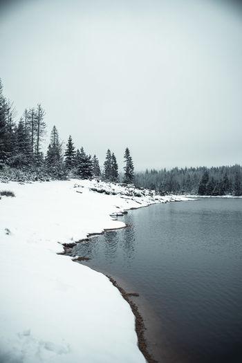 See Oderteich