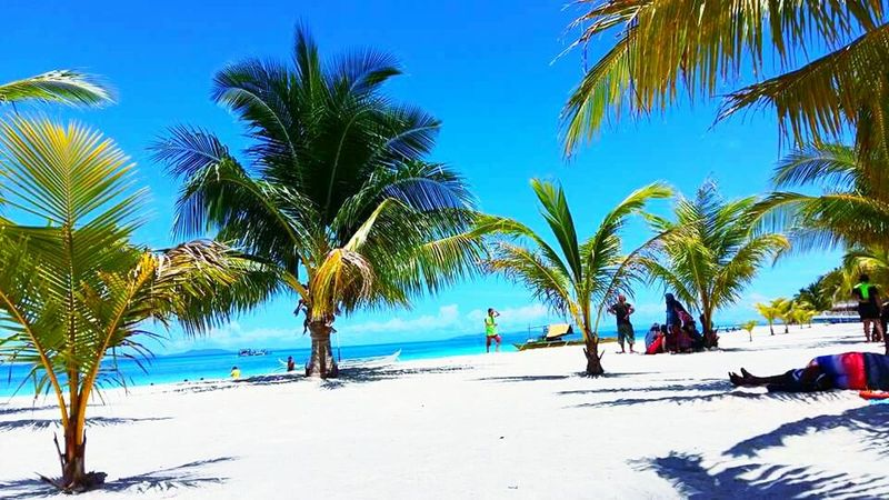 Palm Tree Beach Sand Sea Outdoors Day Tree Nature People Sky Freshair Relaxed Chill Mode WhiteSandBeach Enjoy Under The Sun Family Trip Summer2017 Adult Adults Only