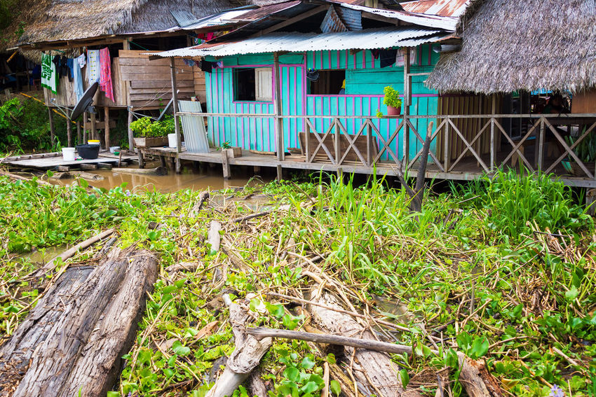 Purple and teal shack on the shore of the Amazon River near Leticia, Colombia Amazon Amazonas Amazonia Building Exterior Built Structure Colombia Day Foliage Forest House Jungle Leticia Nature No People Outdoors Rain Forest Rainforest South America Travel Village