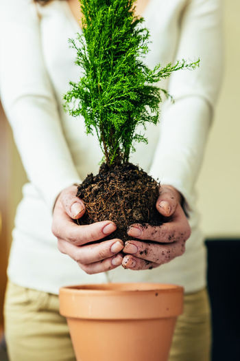 Human Hand Hand Holding Plant One Person Midsection Potted Plant Human Body Part Focus On Foreground Green Color Front View Growth Women Close-up Real People Adult Lifestyles Indoors  Nature Gardening Flower Pot Herb Care Finger Planting Home Interior Copy Space Flowerpot People Young Adult Lifestyle Seeds Bio Eco Earth