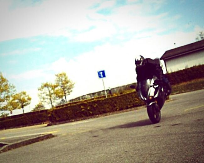 Ride Or Die Triumph Daytona 675 Stoppie Enjoying Life Motorcycles Sunny Day Funny Getting Inspired