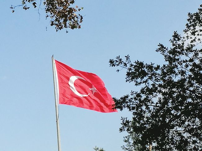 Patriotism Flag Low Angle View No People Tree Outdoors Day Red Sky Journey Travel Turkeyphotos Istanbul Turkey Istanbul, Turkey Travel Destinations Istanbul Asia Patriotism Istanbul City Europpa Asia Istanbul Istanbulstreetphotography Istanbul Europpa Turkeyphotooftheday✪ Turkey💕 Turkey♥ Türkiye 💙💛