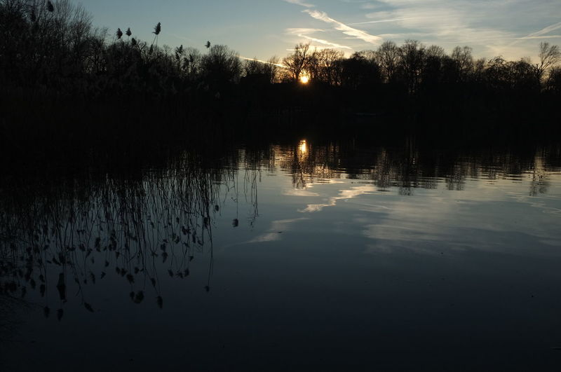 Water Reflection Lake Tranquility Sky Beauty In Nature Tranquil Scene Plant Tree Scenics - Nature Nature No People Non-urban Scene Silhouette Sunset Waterfront Cloud - Sky Outdoors Idyllic Lake View