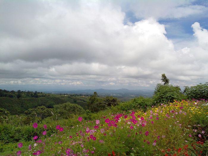 Eyeem Philippines Bukidnon Great Views Eyeemph