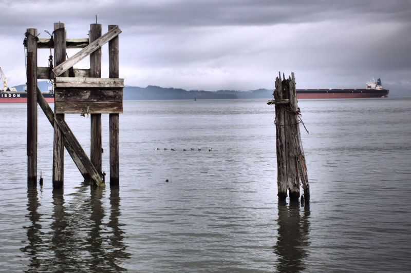 Water Cloud - Sky Sky Wood - Material Tranquility Tranquil Scene No People Post Waterfront Day Wooden Post Pier Architecture Outdoors Ships River Oregon Oregon Explored Columbia River