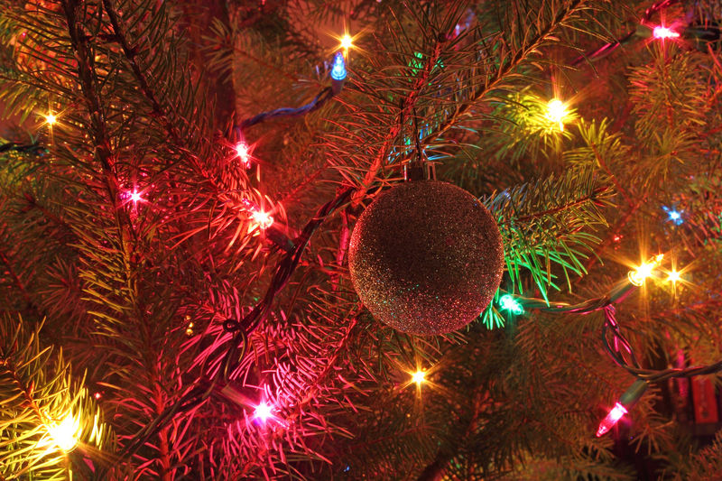 Ornament and lights on the Christmas tree. Albany, Oregon. Best Christmas Lights Christmas Christmas Lights Christmas Tree Decoration Festive Season Fir Tree Glitter Glowing Holiday Illuminated Light Lights Multi Colored Night No People Ornaments