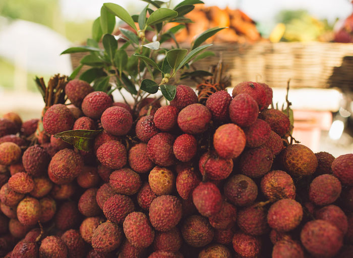Cambodia Siem Reap Abundance Angkor Berry Fruit Close-up Day Focus On Foreground Food Food And Drink Freshness Fruit Healthy Eating Heap Large Group Of Objects Lychee Nature No People Red Ripe Still Life Tropical Fruit Wellbeing