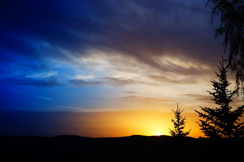 Just another sunset Beauty In Nature Colorful Landscape Nature No People Outdoors Picture Pilis Pilisszántó Scenics Silhouette Sky Sunset Tranquil Scene Tranquility Tree