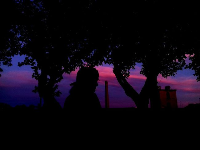 Silhouette Tree Night One Person Star - Space Architecture Outdoors Sky Beautiful Sky Beauty In Nature Beautiful Nature Astronomy Abandoned Nature Trees And Sky Textured  Blue And Pink Sky