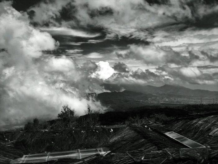Black And White Landscape