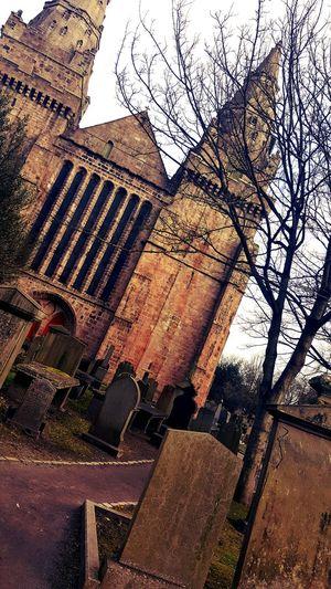 Cemetery Church Trees Cmentarz