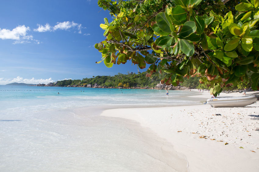 La Digue Anse Lazio Anse Source D'argent Beach Beauty In Nature Day Growth Idyllic Landscape Mahé Nature No People Outdoors Praslin Seychelles Scenics Sea Sky Tranquil Scene Tranquility Travel Destinations Tree Tropical Climate Water