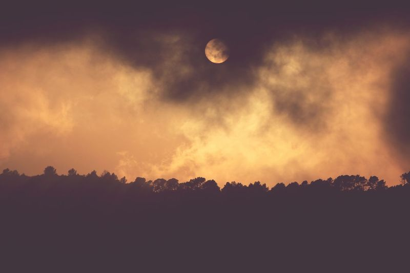 Astronomy Sky Outdoors No People Nature Tree Sunset Cloudy Cloud Sun Stange Like A Fire Beatiful Days  Days Out