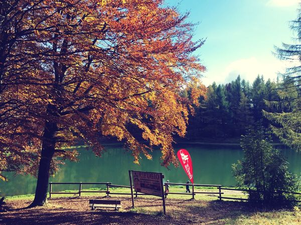 Nature Three Autumn Beauty In Nature