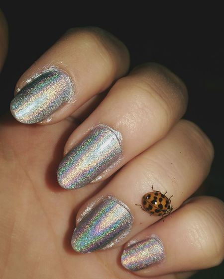 Nails Holographic Glitter Clementine Spring Silver  Hand Light Human Hand Human Body Part Fingernail Beauty Human Finger Manicure Fashion Nail Art Shiny Holding Close-up One Person Glitter Adults Only One Woman Only People Dark