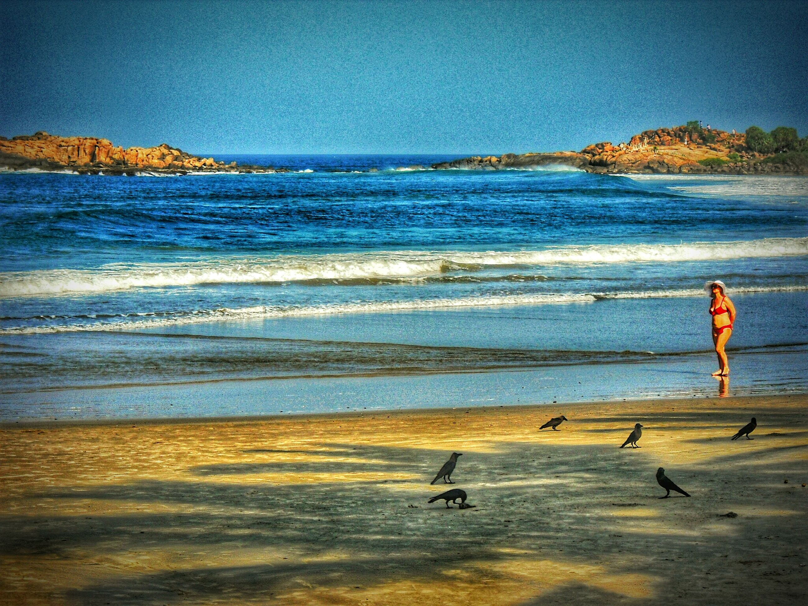 sea, water, beach, horizon over water, shore, scenics, beauty in nature, sand, clear sky, tranquility, tranquil scene, blue, full length, nature, wave, leisure activity, bird, sky