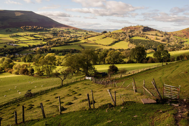Waunfach Wales