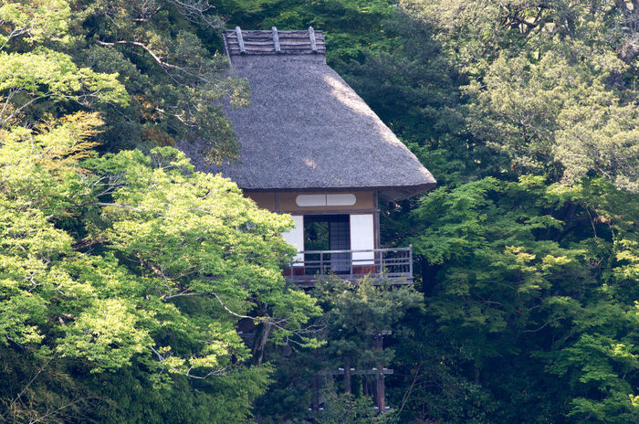 Building Garden House Japan Landscape Ozu Pentax PENTAX K-30 Smc PENTAX-DA★ 300mm F4ED [IF SDM] Thatched Roof