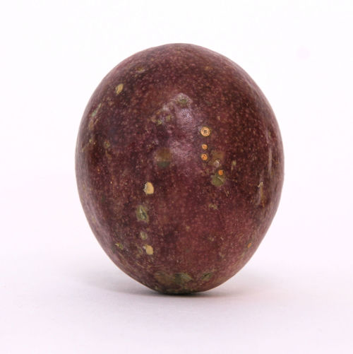 Food And Drink Healthy Eating Food Studio Shot Wellbeing Fruit White Background Freshness Close-up Indoors  No People Single Object Cut Out Still Life Ripe Nature Full Length Organic Apple - Fruit Plum Purple Figurine
