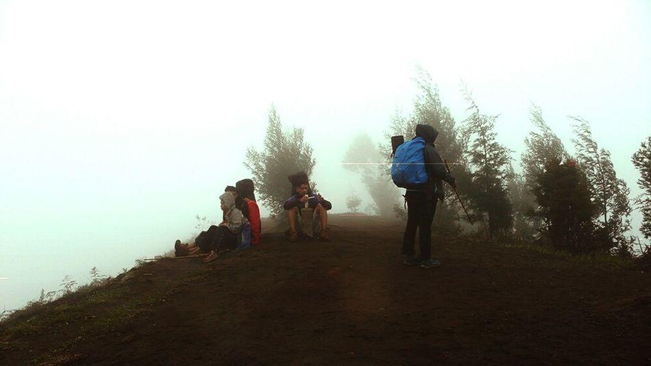 Mt. Prau Praumontain Hikingadventures Haze