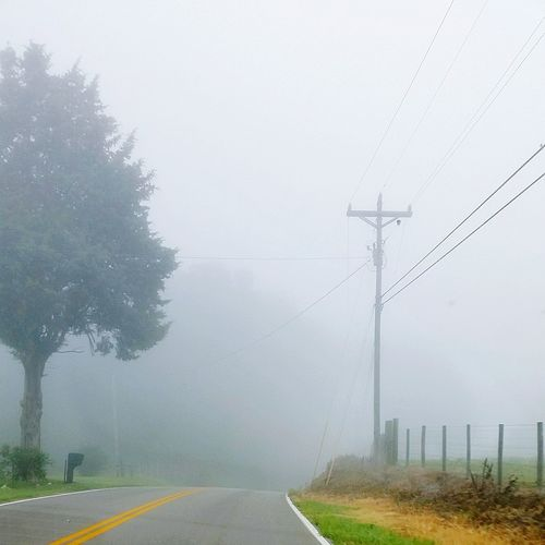 Fog Car Weather Business Finance And Industry Storm Winter Cable Transportation No People Electricity Pylon Road Extreme Weather Storm Cloud Tree Day Outdoors Telephone Line Nature Sky